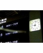 [仕事]花の東京〜♪↓